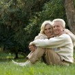 Stock Photo: Elderly couple sitting in summer park