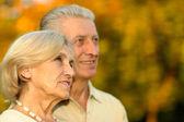 Nice old couple — Stock Photo
