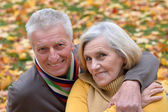 Cute elderly couple sitting in autumn park — Stock Photo