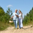 Elderly couple walking in the forest — Stock Photo