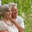 Old couple near the birch in a forest — Stock Photo #30069929