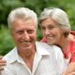 Loving aged couple outdoors — Stock Photo #30069935