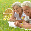 Loving elderly couple having a picnic — Stock Photo
