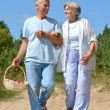 Elderly couple walking in the forest — Stock Photo #30070623