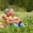 Adorable old couple in the middle of the field — Stock Photo #30070661