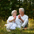 The old couple sitting in grass and eating apples — Stock Photo #30070711