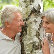 Elderly couple near the birch — Stock Photo #30071169