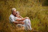 Old couple sitting in the grass near the lake — Stock Photo