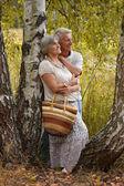 Bejaarde echtpaar staande onder een berk — Stockfoto