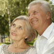 Adorable elderly couple went in the park — Stock Photo #30432123