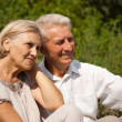 Happy elderly couple went for a walk — Stock Photo #30432281