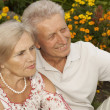 Magnificent elderly couple in the park — Stock Photo #30432287