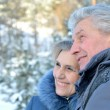 Elderly couple in warm clothes in winter outdoors — Stock Photo