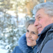 Elderly couple in warm clothes in winter outdoors — Stock Photo #30432309