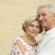 Friendly elderly couple went for a walk — Stock Photo #30432337