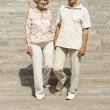 Perfect elderly couple went for a walk — Stock Photo #30432339