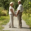 Smiling elderly couple went in the park — Stock Photo