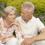 Honey elderly couple in the park — Stock Photo #30432355