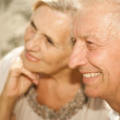 Happy elderly couple went for a walk — Stock Photo #30432357