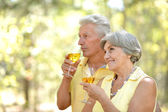 Elder couple drink wine — Stock Photo