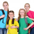 Group  school children — Stock Photo #30734673
