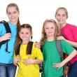 Group school children — Stock Photo