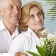 Pleasant old  people at the resort  — Stock Photo
