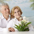 Stock Photo: Fine old people at resort