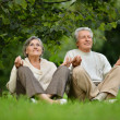 Aged couple doing yoga — Stock Photo