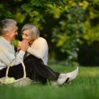 Elderly couple in park — Stock Photo #31622171
