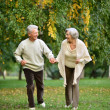 Senior couple in park — Stock Photo #31622173