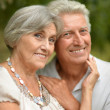 Senior pair in park — Stock Photo #31622195