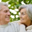Senior pair in park — Stock Photo #31622203