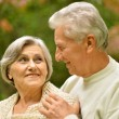 Senior pair in park — Stock Photo #31622215