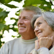 Senior pair in park — Foto de Stock
