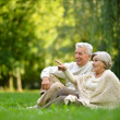 Stock Photo: Elderly couple in park