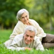 Senior couple in park — Stock Photo #31622383