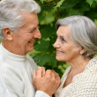 Senior pair in park — Stock Photo #31622409