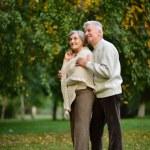Senior pair in park — Stock Photo #31622419