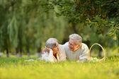 Bejaarde echtpaar op gras — Stockfoto