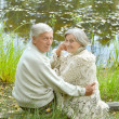 Elderly couple in nature — Stock Photo