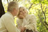 Happy senior couple in park — Stock Photo