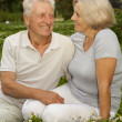 Adorable aged couple in the middle of the lawn — Stock Photo