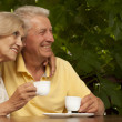 Good-looking older couple sitting on veranda — Stock Photo #32391445