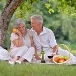 Happy aged couple — Stock Photo #32393009