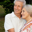 Charming elderly couple in the garden — Stock Photo