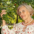 Pretty elderly woman in the garden — Stock Photo #32393827