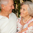 Stock Photo: Glorious elderly couple in forest