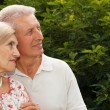 Beauteous elderly couple walk along the streets — Stock Photo #32395129