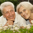 Attractive old couple in the middle of the lawn  — Stock Photo